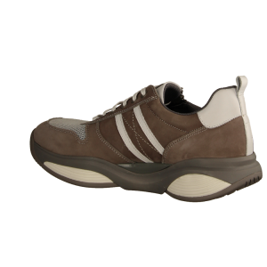 Xsensible SWX3 Men Taupe/White (beige) - Sneaker